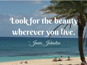 look-for-the-beauty-wherever-you-live